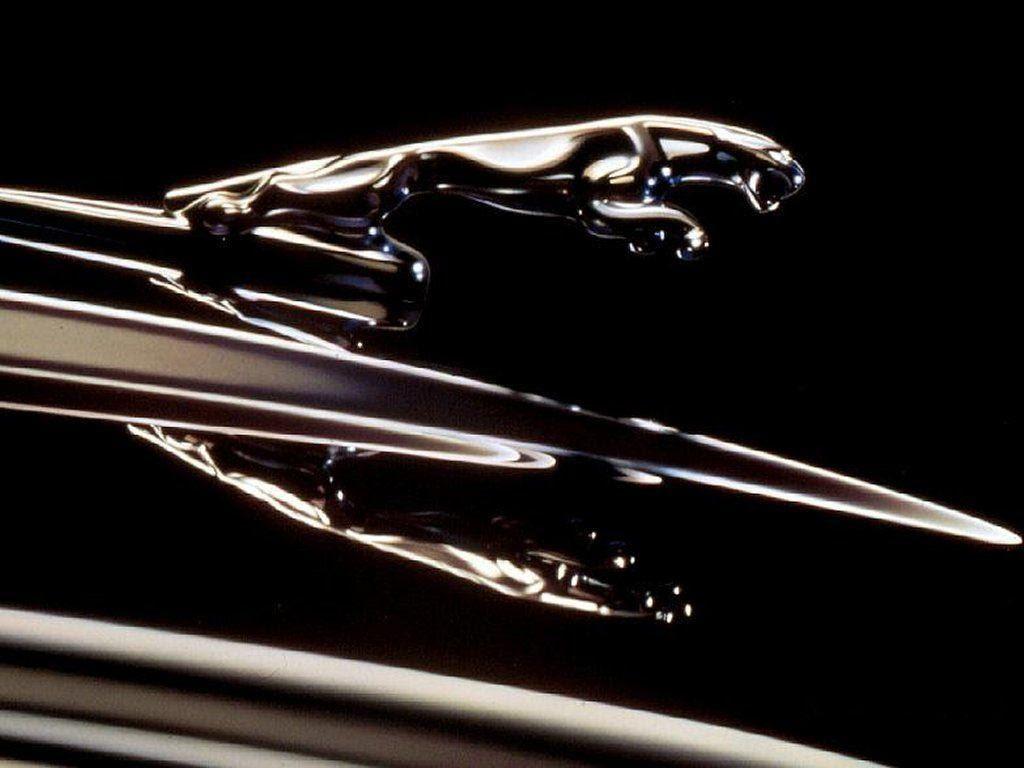 C:\Documents and Settings\Пользователь\Рабочий стол\ЗАКОНОДАВСТВО\Logotip-Jaguar.jpg