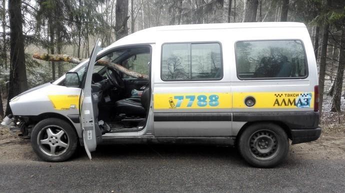 Упавшее дерево прошило лобовое стекло машины, а водитель остался ...