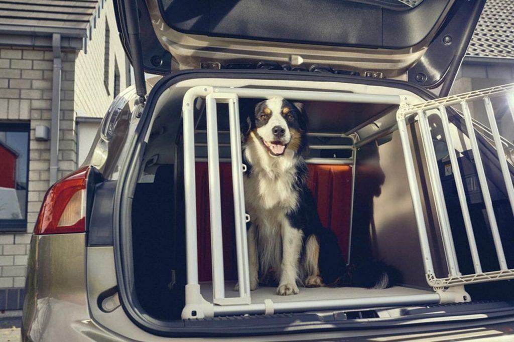 C:\Documents and Settings\Пользователь\Рабочий стол\ЗАКОНОДАВСТВО\ford-dogbox.jpg